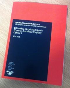 Addroddiad - Bil Lefelau Diogel Staff Nyrsio (Cymru): Adroddiad Pwyllgor Cyfnod 1